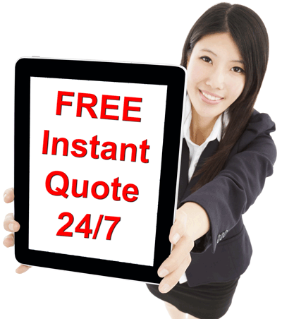 Get an instant translation quote